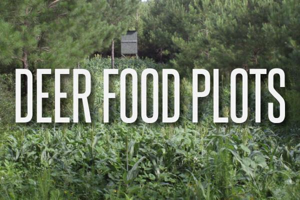 deer-food-plots-text