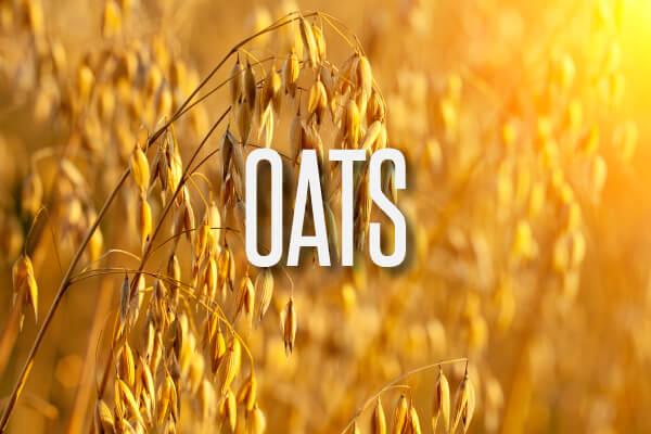 oats-text